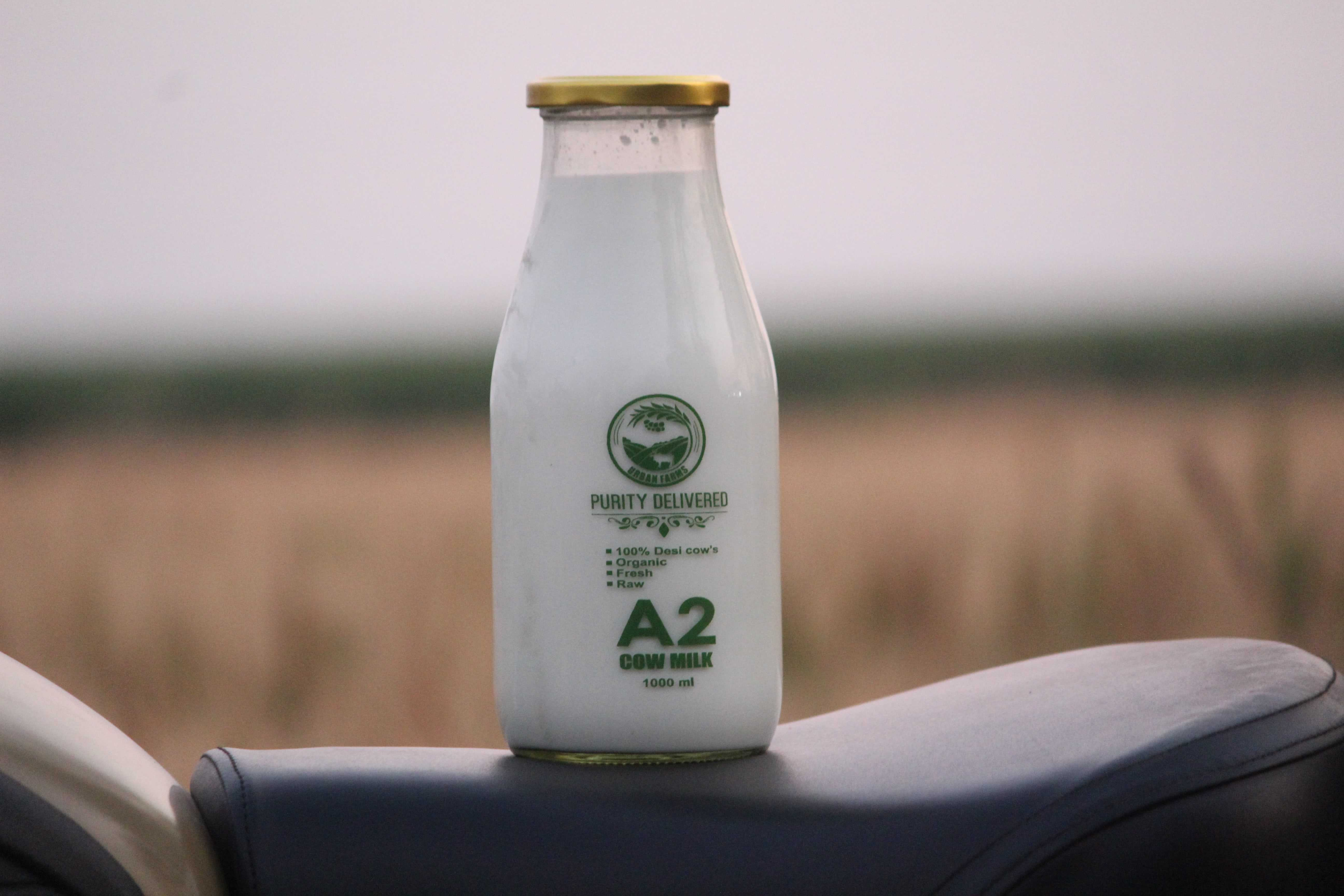 Premium A2 Milk Delivery In Pune