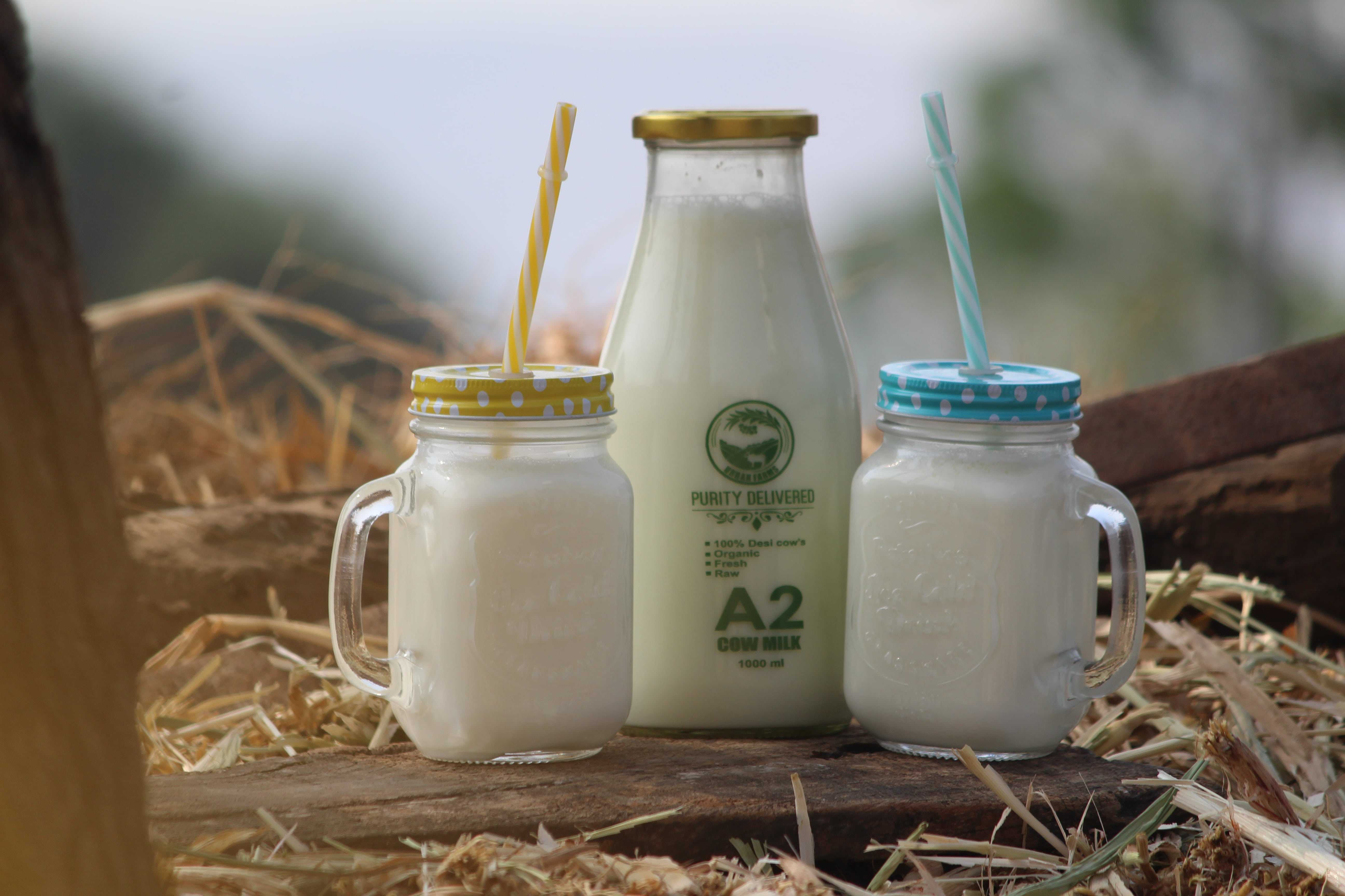 Pure And Organic Milk In Pune