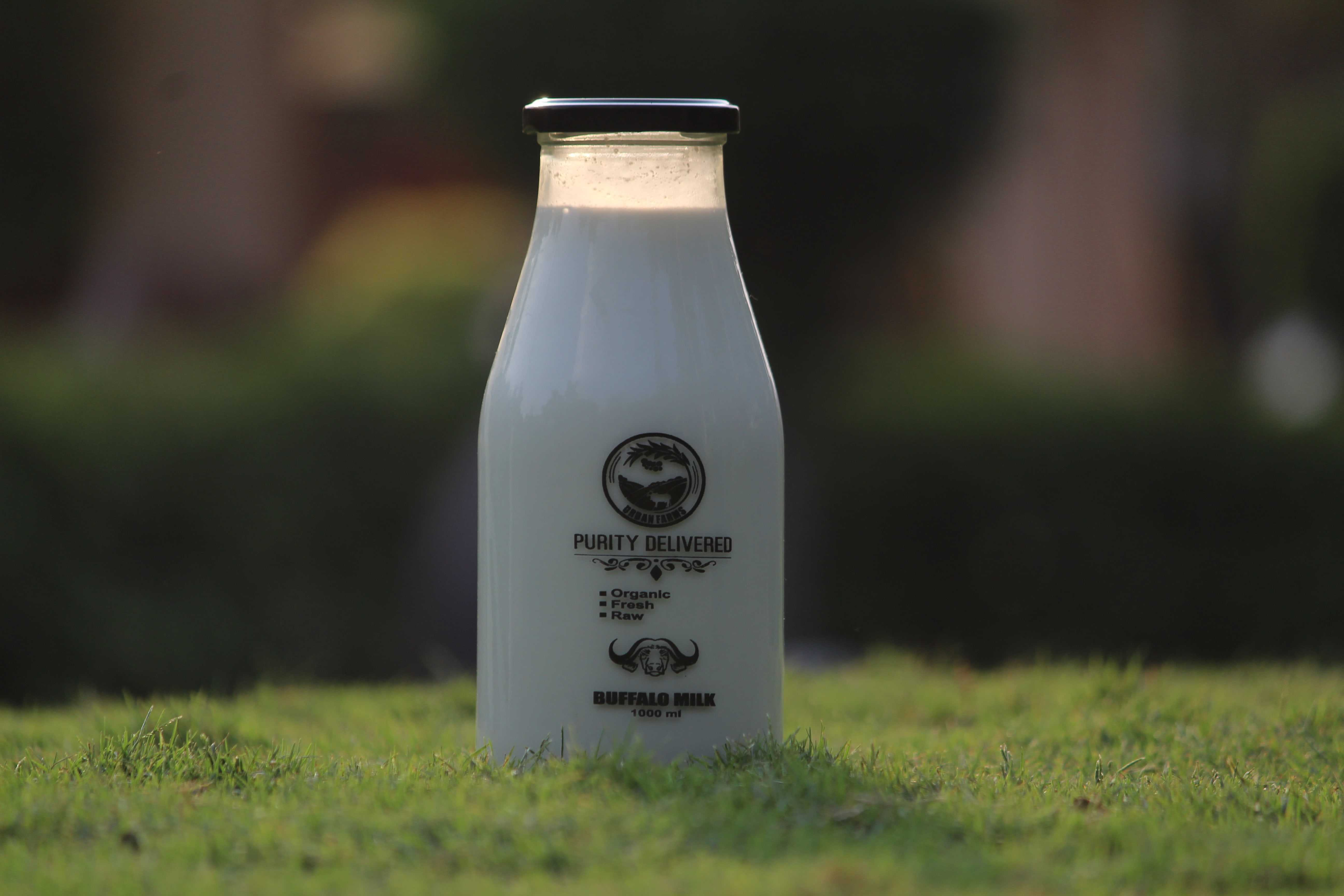 A2 Milk Glass Bottle Home Delivery